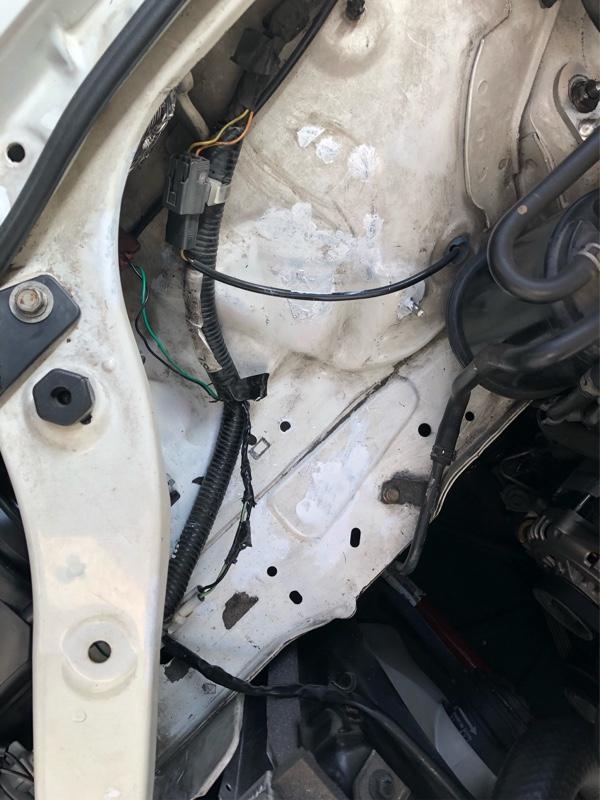 エンジンルーム錆び取り&タッチアップ