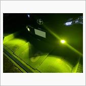 夜の黄緑バージョン