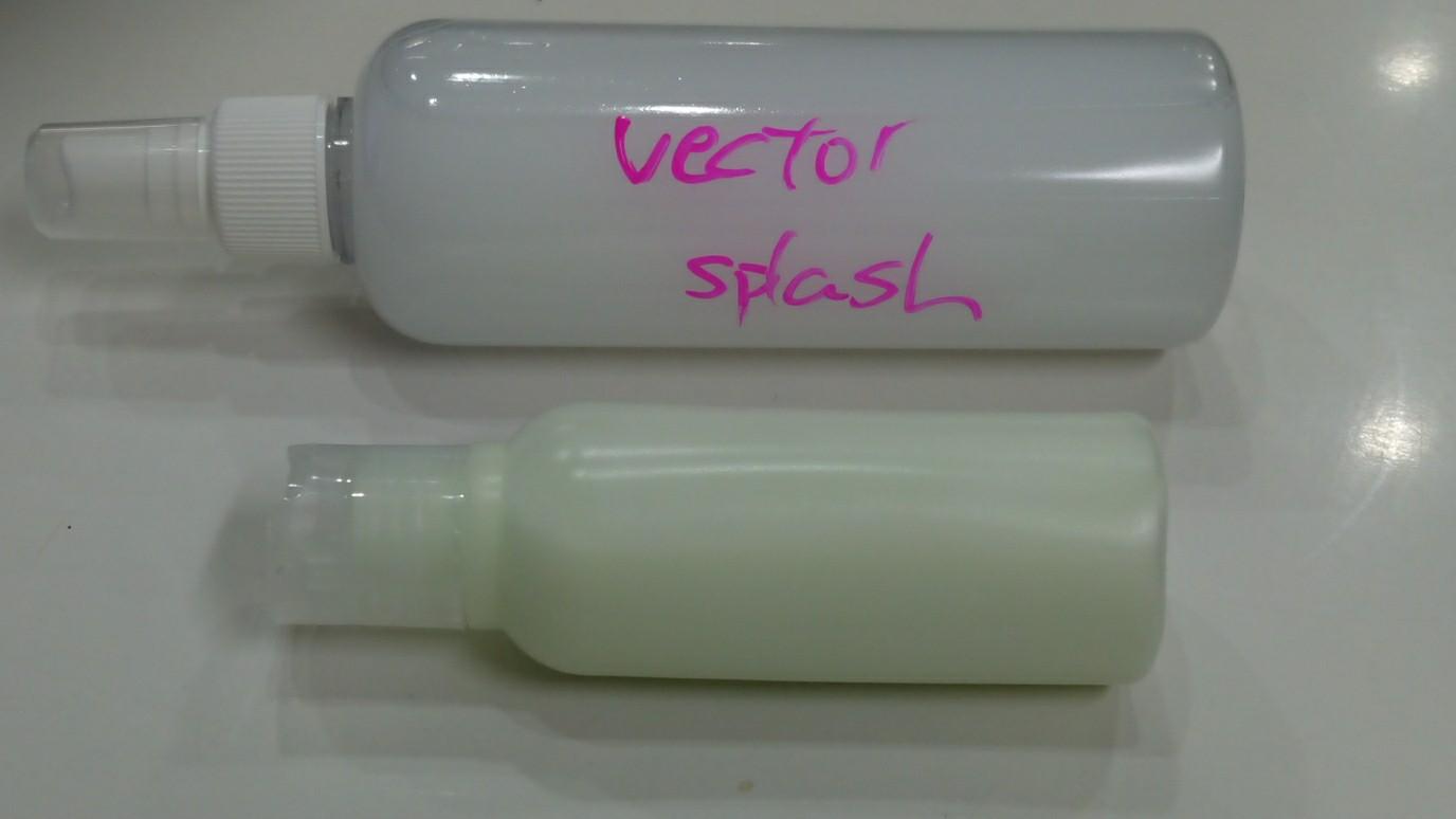 VECTOR コーティング 初回メンテナンス