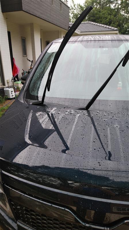 洗車(50回目)