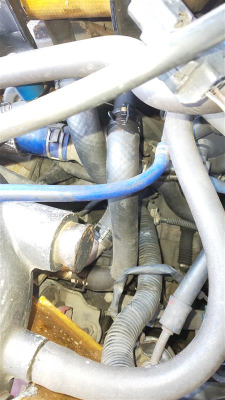 インタークーラー冷却水のホース交換