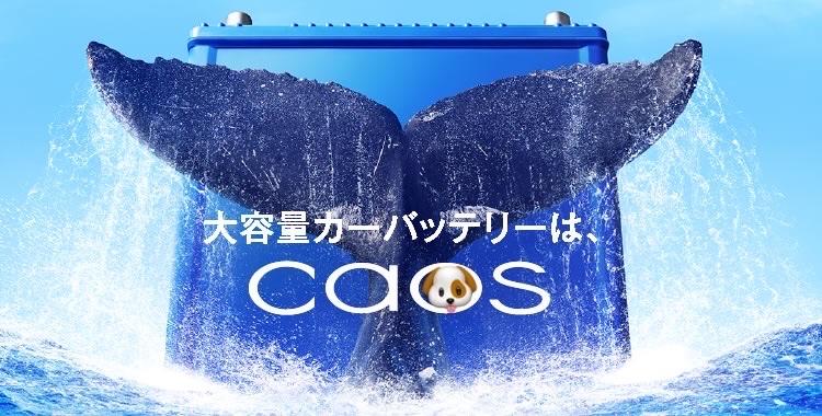 ♻️🚙 バッテリー 交換  カオス C7 100D23L💫