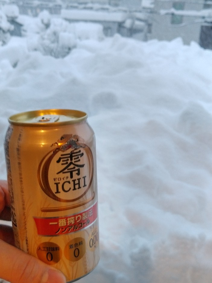 カーポートの雪下ろし(今シーズン2回目)