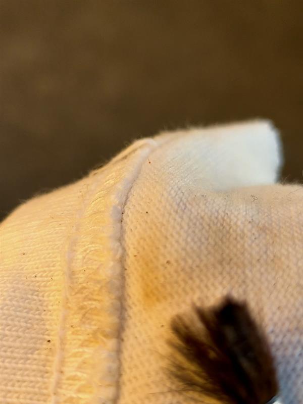 滲みが何なのか分からないんで、細い絵筆を突っ込んで臭いを嗅いだり布に付けてみたりしてみます。<br /> 明らかに溶剤系の臭いがします<br /> 単純にオイルではなさそうだが何なのかは不明