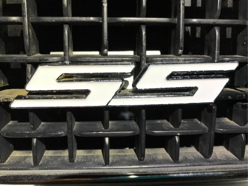 SSエンブレム劣化の為タッチアップで補修