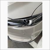 ヘッドライトプロテクトの画像