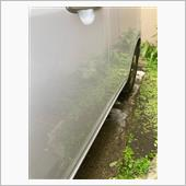 久しぶりの洗車、の画像