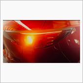 シェアスタイル製 シーケンシャル ウインカー2色の画像