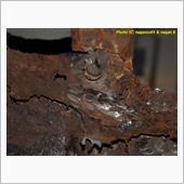 R-2君、室内床のトランク床接続部分を切りそろえるの画像