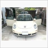 通常洗車→グラスターゾル拭き上げ(手抜)