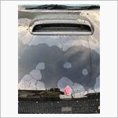 第6回洗車 ブリス2回目施工