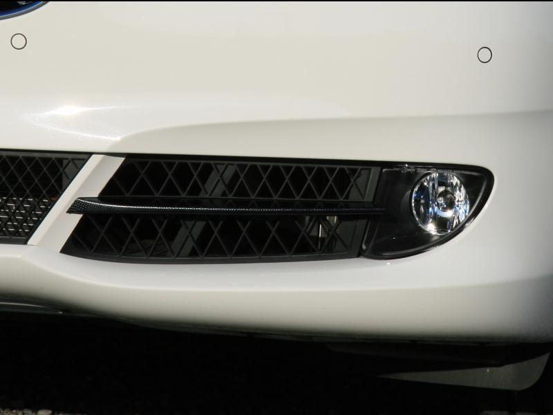5シリーズグランツーリスモDIY フィンのカーボン調塗装&グリルフレーム同色塗装の単体画像