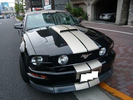 マスタング コンバーチブルClassic Design Concept Mustang GT Chin Spoiler (2005-09) の単体画像