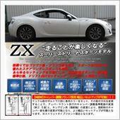 RACING GEAR ZX DAMPER