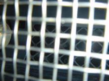 コルベット クーペ不明 Z06 Fog Light Screens (でしたっけ?)の全体画像