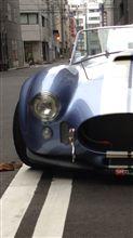 コブラチンスポ 軽自動車用の全体画像