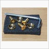 ネジのトミモリ ステンレス純金メッキナンバープレート用ボルト