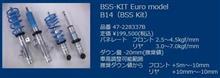 BSS-Kit Euro model