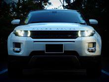 レンジローバーイヴォークLand Rover(純正) Gloss Black front grille for Range Rover Evoque Pure Prestige Dynamic bumperの全体画像