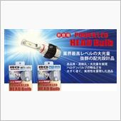 RACING GEAR POWER LED HEADバルブ 6500K H9/11 RGH-P701