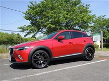 CX-3RAYS WALTZ FORGED WALTZ FORGED S5の全体画像