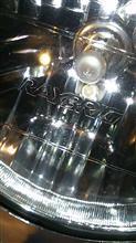 ガリューIIIRAYBRIG / スタンレー電気 ハロゲンヘッドランプの単体画像