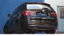 X3ARQRAY for BMW F25 X3 20d / Stainless Seriesの全体画像