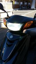 アクシス トリートサインハウス サインハウス LED RIBON XHP7015W  LEDヘッドライトバルブキットの全体画像