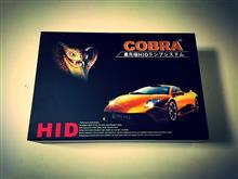 グランドC4ピカソCOBRA 55W キャンセラー内蔵HIDキット 6000K H7cの単体画像