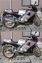 FZR250LCI ショート・カーボンスリップオンマフラーの全体画像