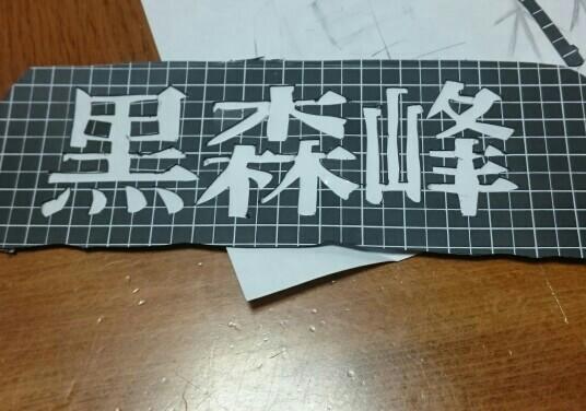 ダイハツ(純正) オリジナルランプカバー (黒森峰)