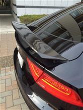 S7 スポーツバックメイクオーバー カーボンウィングの全体画像