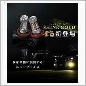 Share Style アルファード 30系適合 H16 LEDフォグランプ 80W ホワイト/シャインゴールド