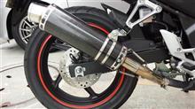 CB250F MC43wiruswin スリップオン スポーツタイプ ブラックカーボン仕様の単体画像