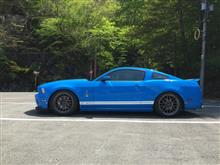 SHELBY GT500ラルグス 車高調の全体画像