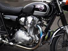 W800BEET JAPAN NASSERT TRAD-Vの単体画像