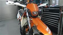KDX125SRポリスポーツ ヘイローの単体画像