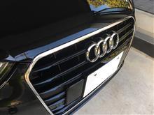A3(セダン)Audi純正(アウディ) A3グリル グロスブラックの単体画像