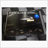 FABULOUS DOOR MIRROR LED WINKER LAMP
