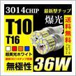 REIZ TRADING LEDバルブ T10/T16