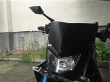 KDX200SRメーカー不明 ヘッドライトカウルの全体画像