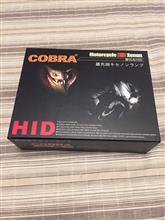 JOGCOBRA COBRA HIDキット PH8 15W 6000Kの単体画像