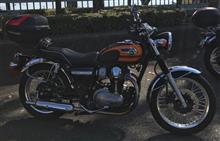 W800BEET JAPAN NASSERT TRAD-V ヒートガードボス付き仕様の単体画像