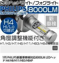 ライフ不明 たぶん大陸製 H4 LED 8000lmの単体画像