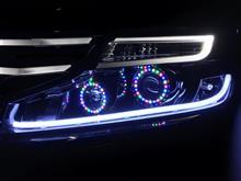 ステップワゴンスパーダホンダ(純正) みなとのわたくん工房 カスタムヘッドライトユニットの単体画像
