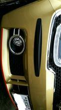 イグニスUMP-PROT CarOver バンパーガード カーボン調の単体画像