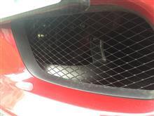 ランサーエボリューションX三菱自動車(純正) フロントバンパーダクト 網の単体画像