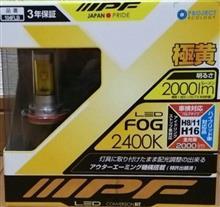 LEDフォグバルブ 104FLB H8/11/16 2400K
