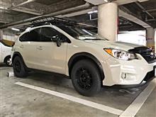 XVハイブリッドTeam Dynamics Team Dynamics Pro Rally 1 の全体画像