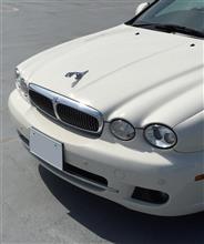 Xタイプ エステート (ワゴン)ジャガー(純正) 前期型フロントグリルの全体画像